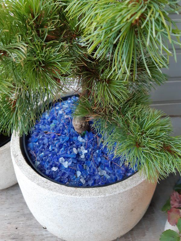 Mėlynas stiklas 3-8